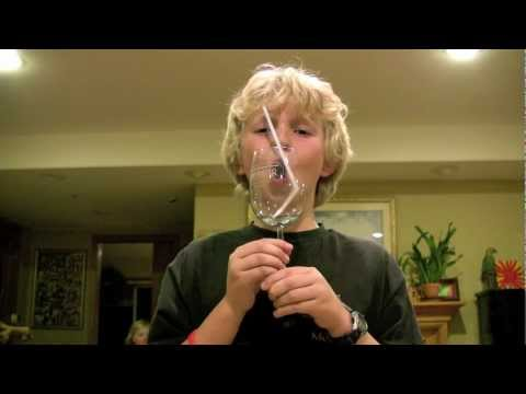 Kid breaks Wine Glass With Only His Voice