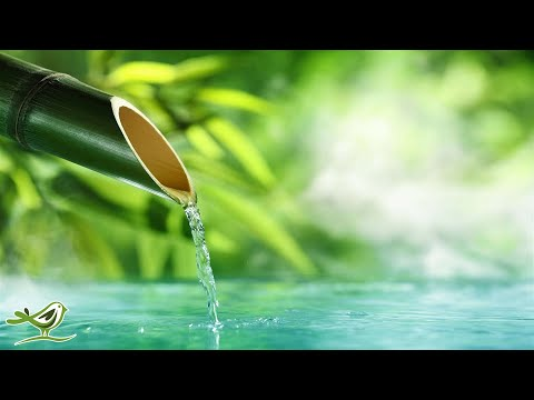 Video 10 Hours of Relaxing Music  - Calm Piano Music, Sleep Music, Water Sounds, Meditation Music download in MP3, 3GP, MP4, WEBM, AVI, FLV January 2017