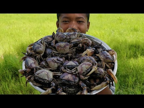 Delicious Rice Field Crab Cooking / Eating Crabs - Thời lượng: 10 phút.