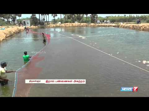 Illegal Prawn farms removed | Tamil Nadu | News7 Tamil