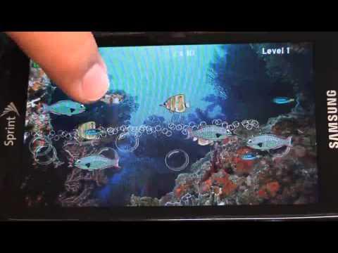 Video of FishFarts