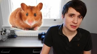 The true story of how a hamster taught me the meaning of freedom and how to truly live. click here: ...