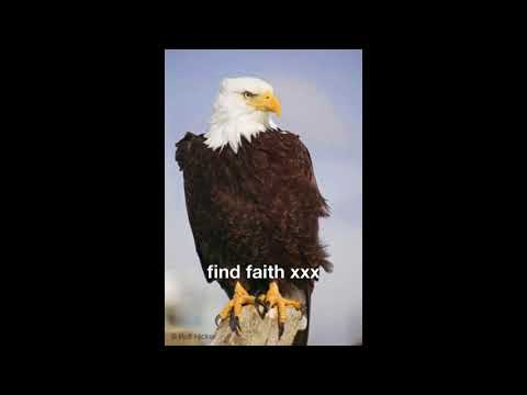 find faith xxx