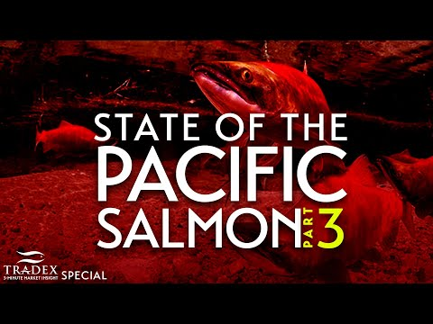 3MMI - STATE OF THE PACIFIC SALMON: Part 3
