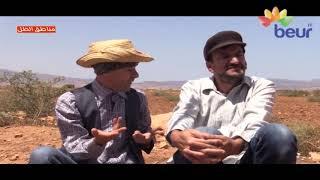 الدوار: تباب محمد