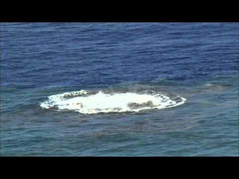 Matka Natura próbuje stworzyć wyspę! Niesamowity widok na Południowym Pacyfiku!