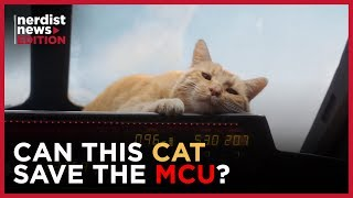 Why This Cat Is the Real Star of Captain Marvel (Nerdist News Edition)
