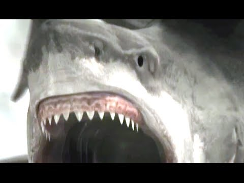 Sharknado 2: The Second One (Trailer)