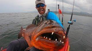 Video Giant Snapper with HUGE Teeth  | Field Trips Panama MP3, 3GP, MP4, WEBM, AVI, FLV Oktober 2018