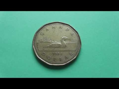 Forex CAD coin - The One Canada Dollar coin in HD