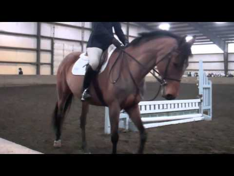 Alison Radgowski's Ride in Intermediate Flat - 1/25/14