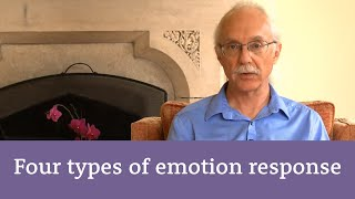 Different kinds of emotional responses in EFT