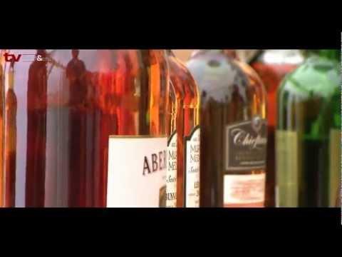TV Gastro&Hotel: Skotské hry Sychrov