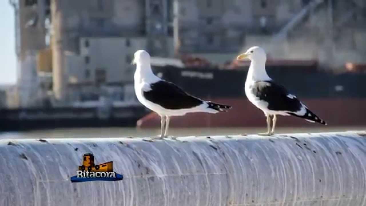 Consorcio de Gestión del Puerto de Bahía Blanca en la FISA 2014