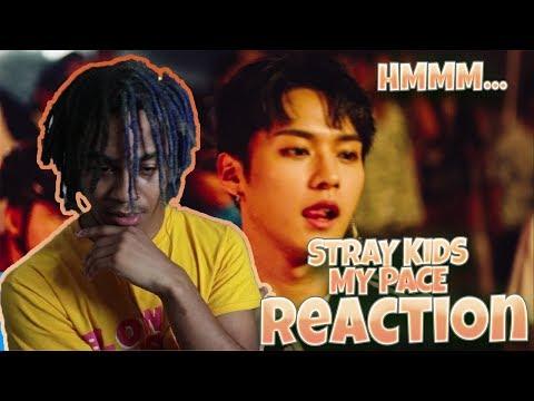 Video Stray Kids