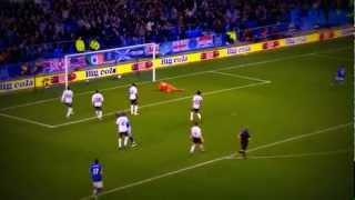 Jelavic und seine Treffer in der Saison 2011/12 für Everton