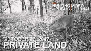 Video Private Land: October 17 - Hunting a Big 8, Overlooking a Scrape | The Hunting Public MP3, 3GP, MP4, WEBM, AVI, FLV Oktober 2017