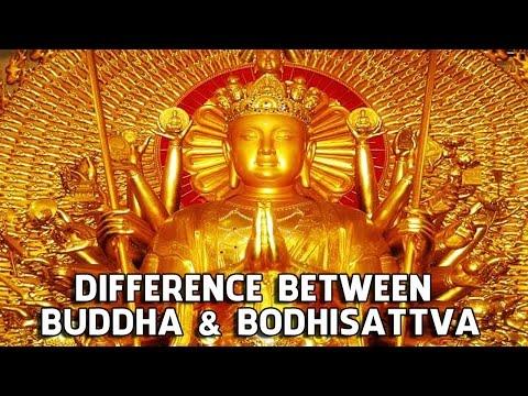 Difference Between Buddha and Bodhisattva