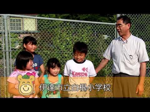【福島ひまわり里親プロジェクト】伊達市立白根小学校の皆さんから全国の里親さんへ