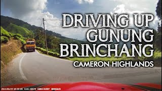 Cameron Highlands dashcam video.