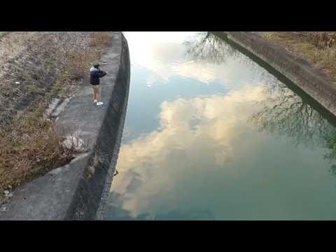 ドイツ鯉を釣りました。[ドローン撮影] #4