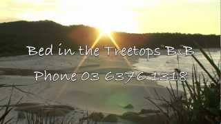 Binalong Bay Australia  City pictures : ACCOMMODATION TASMANIA BINALONG BAY BED IN THE TREETOPS BAY OF FIRES