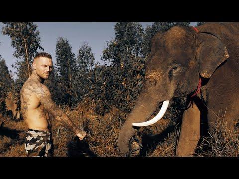 Kontra K - Kampfgeist 4 (Official Video)