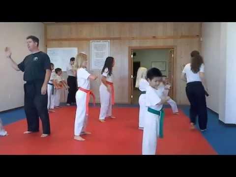 Hampton's Karate Academy - One-steps Practice 01