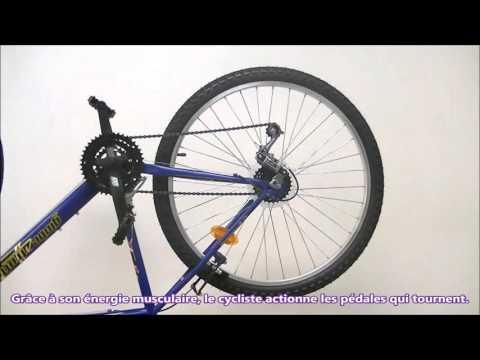La transmission du mouvement dans le vélo
