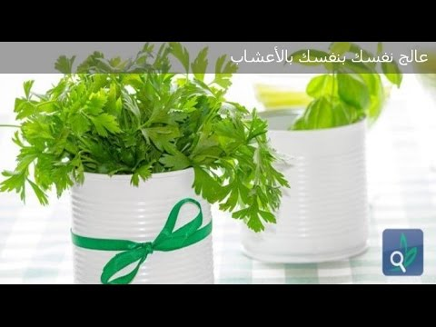عالج نفسك بنفسك بالأعشاب Dr Jamal Skali : Andi Dwak (видео)