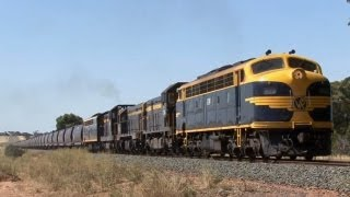 Swan Hill Australia  city photos gallery : Classic EMD's on the Swan Hill line: Australian Trains
