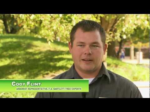 Urban Forestry an der Purdue University