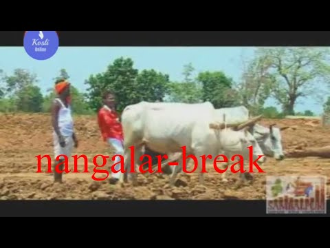 Video Sambalpuri comedy-Nangalar Break ! Sambalpuri Movie of Bharat chhad download in MP3, 3GP, MP4, WEBM, AVI, FLV January 2017