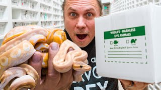UNBOXING INCREDIBLE DANGER NOODLES!! | BRIAN BARCZYK by Brian Barczyk