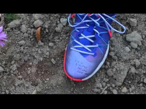 Video: Chris Paul Fan's Touching Request