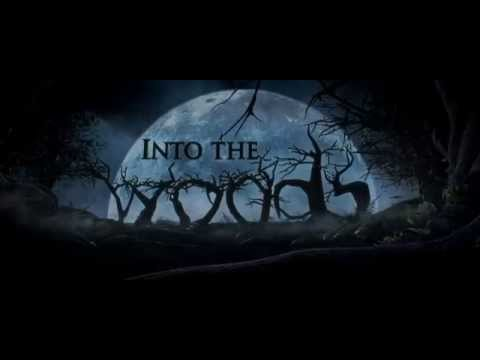 Into the Woods (TV Spot 'AMA's')