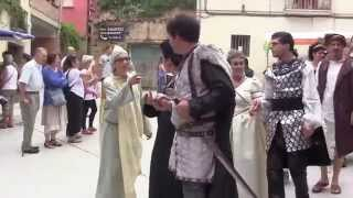 Olite Spain  city pictures gallery : Procession festival médiéval Olite. Medieval festival in Spain / Olite