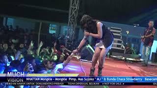 Video KONCO TURU   RESA LAWANGSEWU MANHATTAN BASOKA XTSREME Katan Lor Tambakromo Pati 2018 MP3, 3GP, MP4, WEBM, AVI, FLV Juli 2018