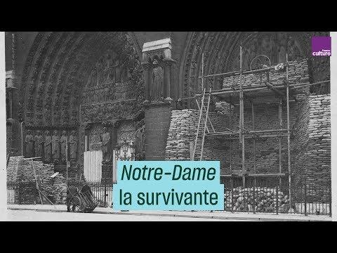 Notre-Dame de Paris: histoire d'une survivante