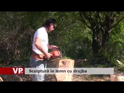 Scupltură în lemn cu drujba