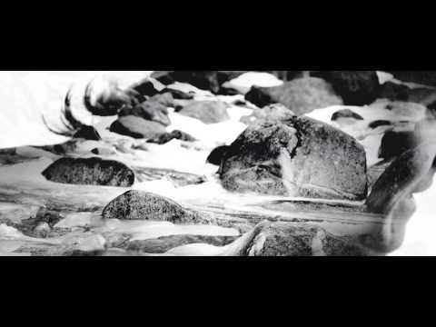 Wake Owl - Wild Country