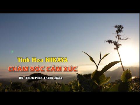 Tinh Hoa NIKAYA - CHĂM SÓC CẢM XÚC