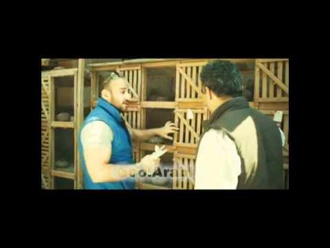 أحمد مكي وقصته الغريبة مع الحمام