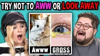 Video College Kids React to TRY NOT TO LOOK AWAY or AWW MEGA CHALLENGE MP3, 3GP, MP4, WEBM, AVI, FLV Oktober 2018