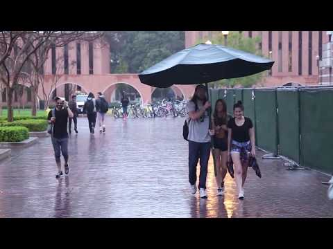 Making Strangers Day with a Giant Umbrella