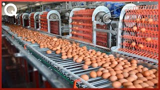 Video Food Industry Machines That Are At Another Level ▶7 MP3, 3GP, MP4, WEBM, AVI, FLV September 2019