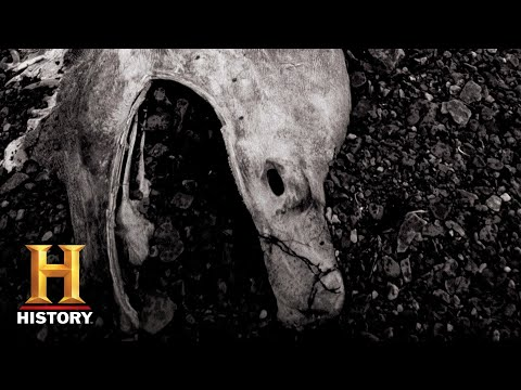 Mystery of the Stronsay Beast | In Search Of (Season 2) | History