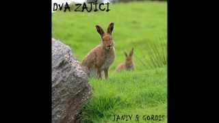 Video Janiy & Gordis - Dva zajíci