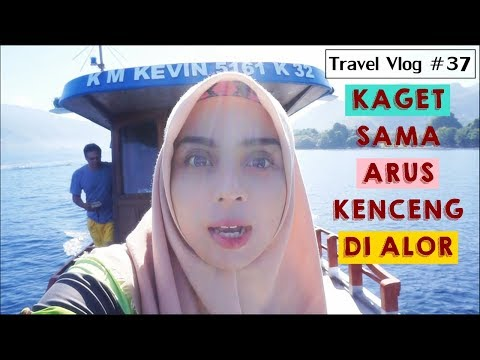 ALOR TRIP Part 4/5 | Travel Vlog #37 : MY DIVING STORY WITH ALOR DIVE 2017