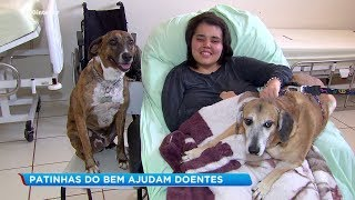 Cachorros ajudam no tratamento de pacientes de hospital psiquiátrico de Jaú